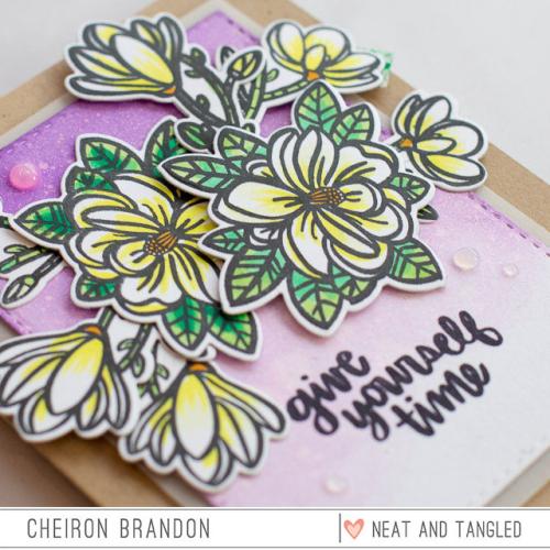 Cheiron - magnolia