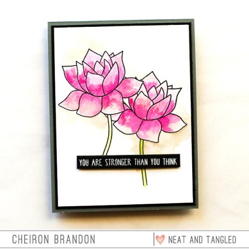 Cheiron lotus_
